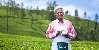 70 years of Tea Inspiration