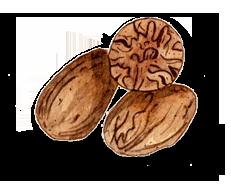 Seeds of Nutmeg Tea