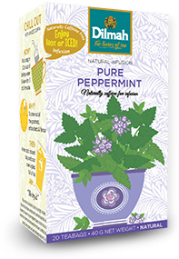 Pack of Pure Peppermint Tea by Dilmah