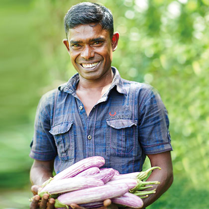 Eggplants Being Held by a Man