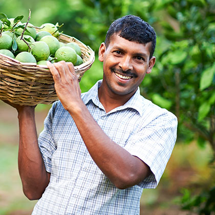 Fruits Filled Basket Being Carried by a Man