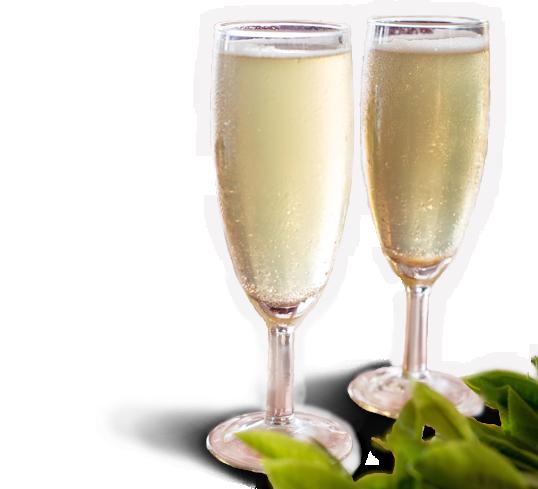 Cuvée Craighead Estate - Extra Fine Ceylon Silver Tips