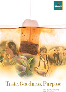 Dilmah Ceylon Tea Company PLC Annual Report 2018 - 2019