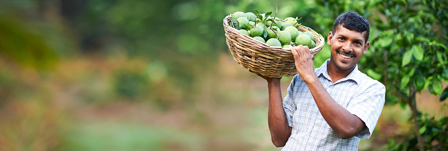 Man Carrying a Basket Filled with Fruits