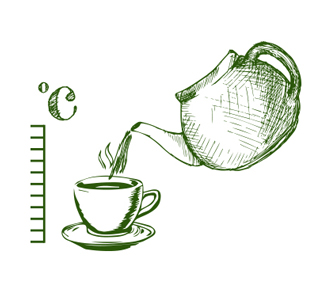 Sketch of a Pouring Tea into a Cup from a Teapot