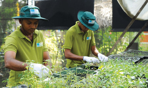 Dilmah Conservation